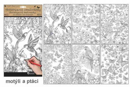 Antistresové omalovánky 6 motivů 6 stránek motýli a ptáci 36,5x21,5cm