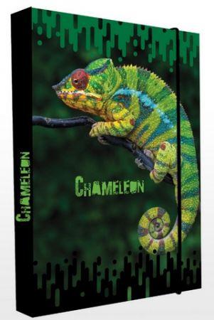 Box na sešity A4 chameleon / P+P KARTON - OXYBAG - OXY BAG