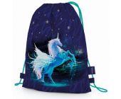 Sáček na cvičky Unicorn (Jednorožec sáček na přezůvky) (Karton P+P)