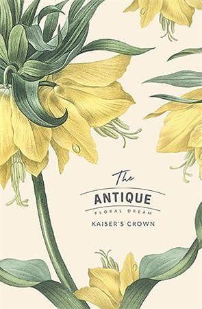 """Sešit """"Antique floral dream"""", mix motivů, čistý, tvrdé desky, A6, 80 listů, SHKOLYARYK"""