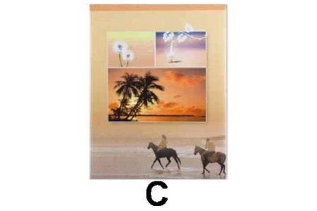 """Fotoalbum 9x13/100foto SUMMER-11 ,,C"""" (9x13-cm-100-foto)"""