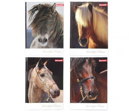 Záznamní kniha A5/96listů linka Koně
