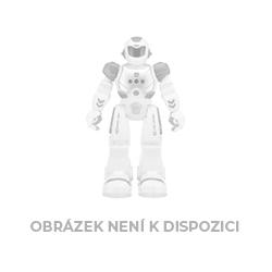 Diář denní A5 Květy 2020, 15 x 21 cm (HERLITZ)